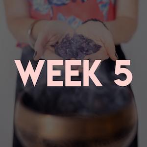 Week 5.png