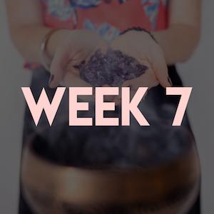 Week 7.png