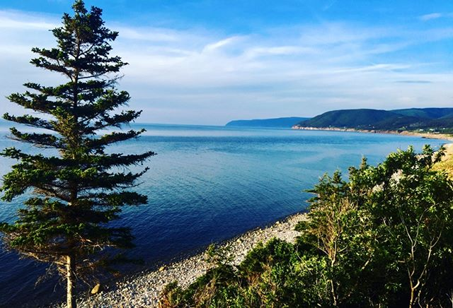 Onsite Beach Access.  Yes please! Follow the flora from cliff to sea. #truenorthdestinations #capebretondomedestination