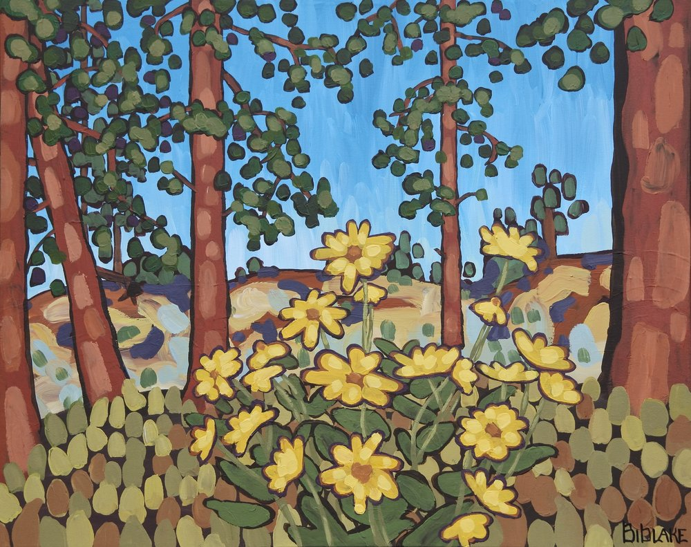 "'Balsamroot Forage' Sold 24x30"" acrylic on canvas"