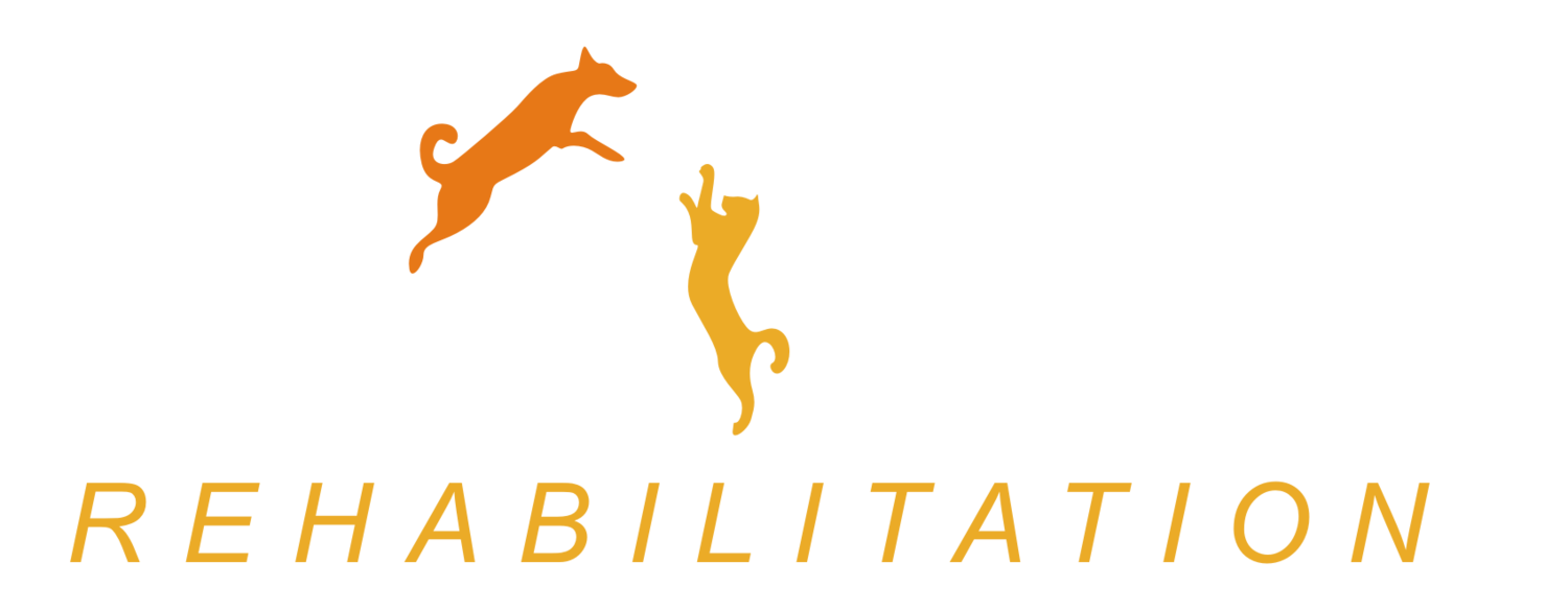 Active Pet Rehab