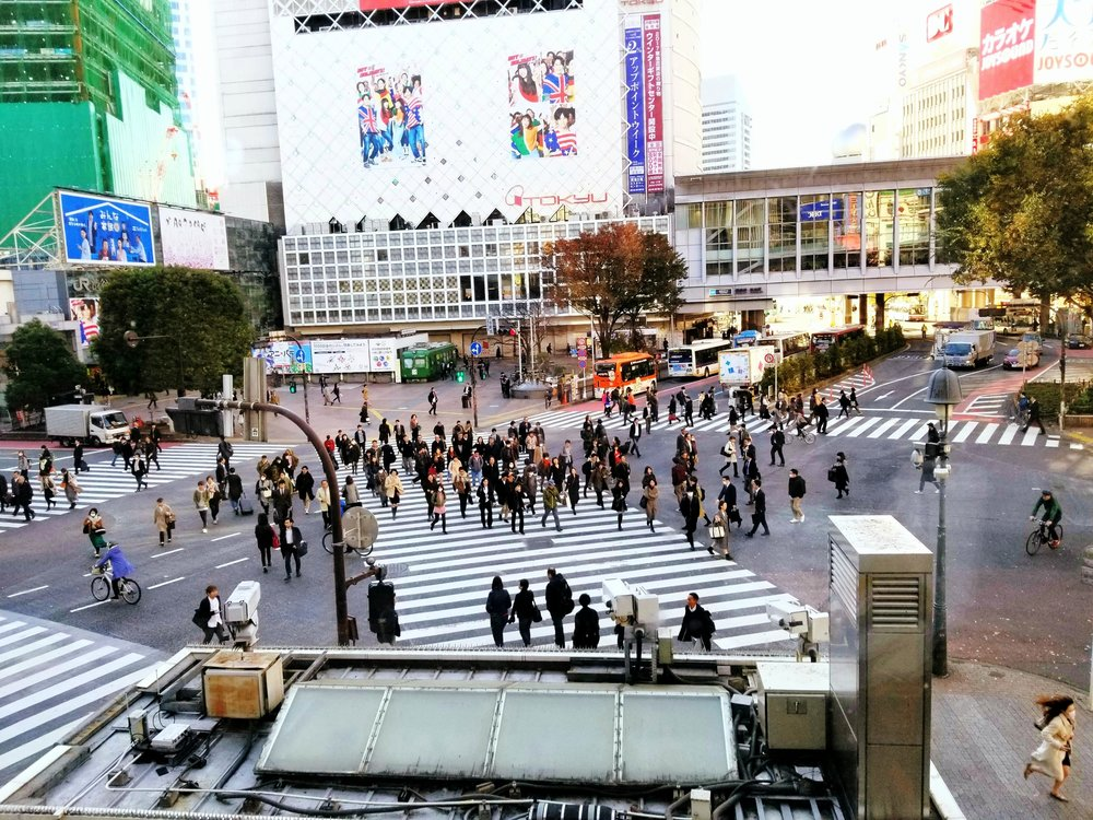 uprooted-traveler-shinjuku-crossing-foolproof-guide-to-tokyo