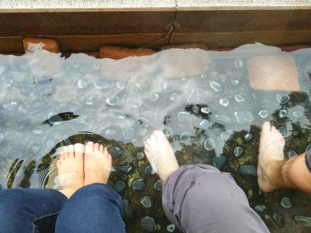 Enjoying the hot springs for your dogs at the Hakone Open Air Museum.