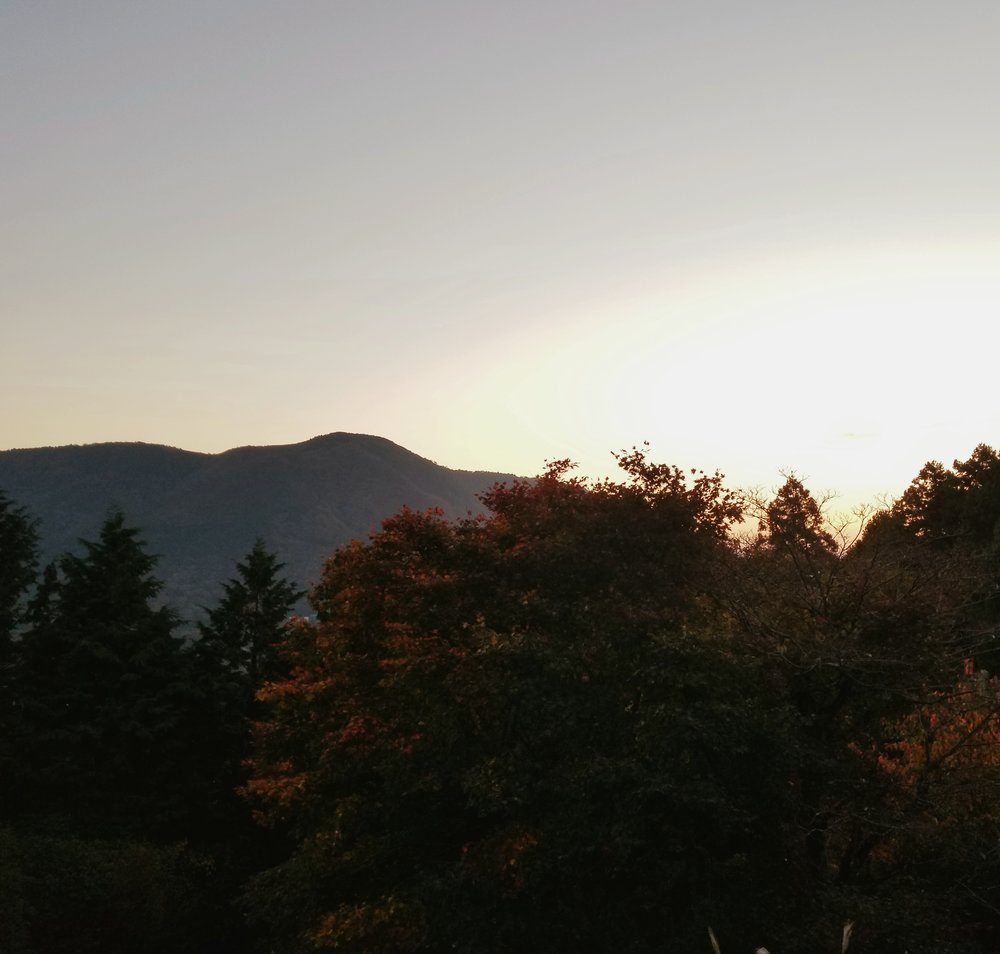 uprooted-traveler-vegan-guide-to-hakone-sunrise-Kamiyama