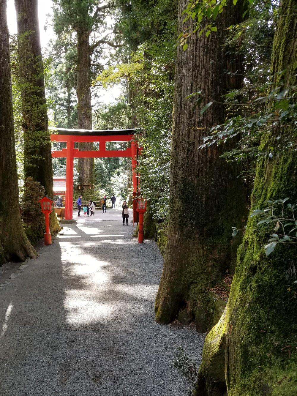 uprooted-traveler-hakone-shrine-vegan-guide-to-hakone