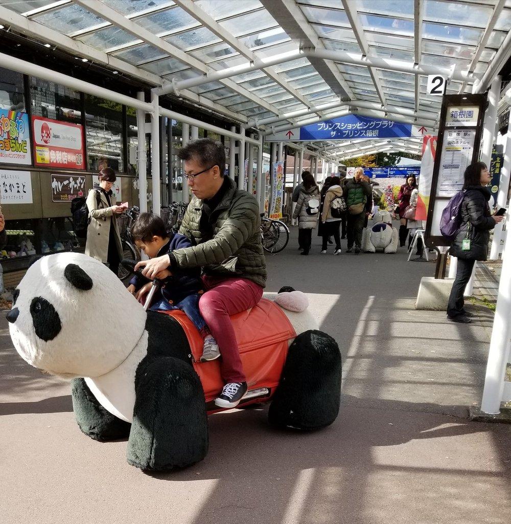 uprooted-traveler-vegan-guide-to-hakone-panda