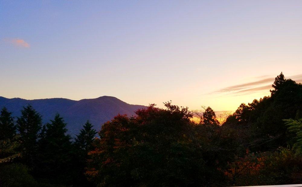 uprooted-traveler-mount-Kamiyama-sunrise-vegan-guide-to-hakone