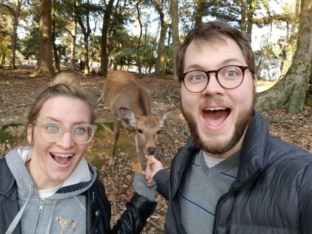 uprooted-traveler-nara-kyoto-deer.jpg