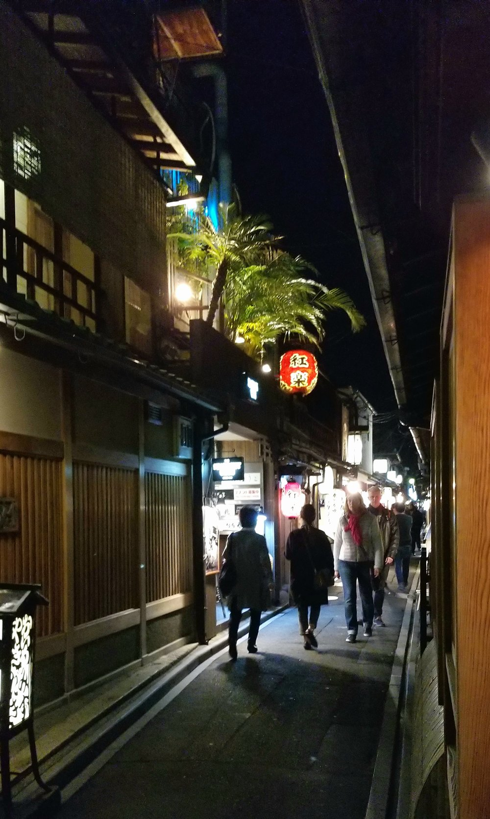uprooted-traveler-ponocha-alley-vegan-guide-kyoto