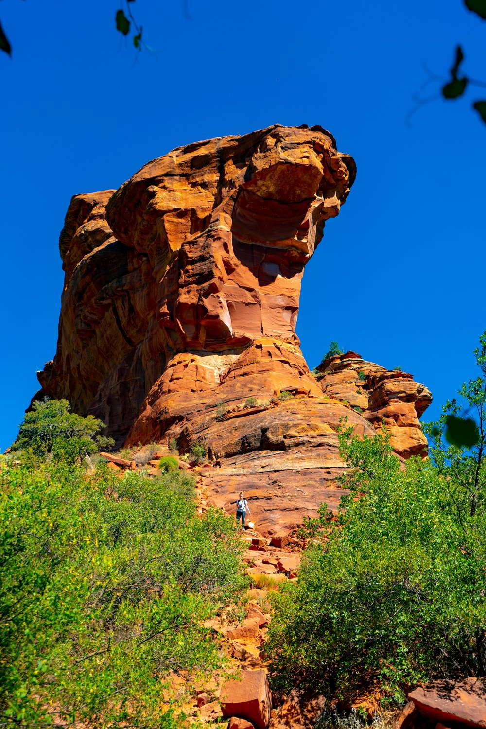 uprooted-traveler-sedona-arizona-fay-canyon-vegan-road-trip.jpg