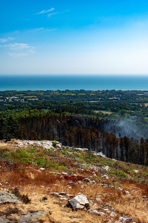 uprooted-traveler-dublin-Barnaslingan -wildfire-dublin-mountains-ireland-vegan-guide.jpg