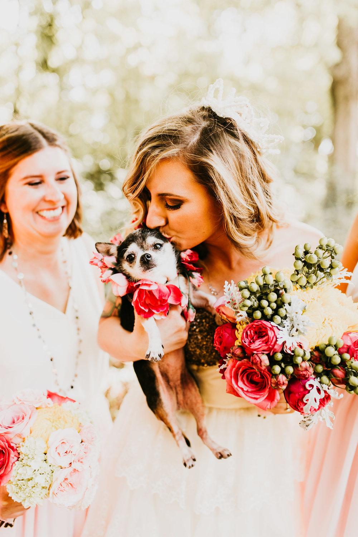 uprooted-traveler-traditional-vs-vegas-wedding-chihuahua-flower-girl-kisses-vegan.jpg