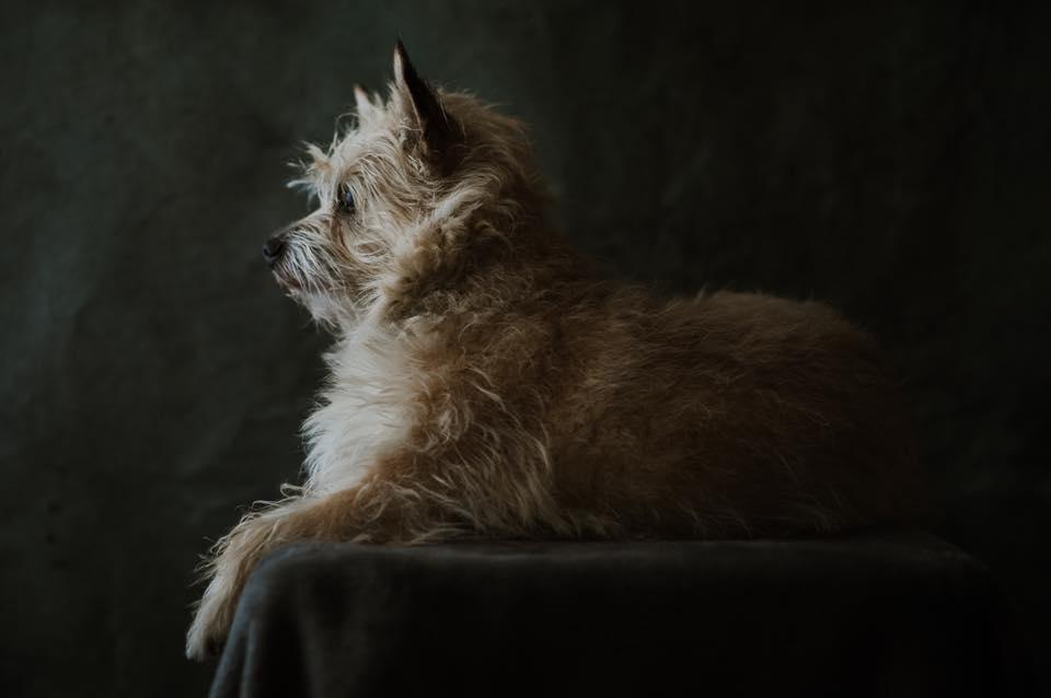 Portrait by Blake Loates