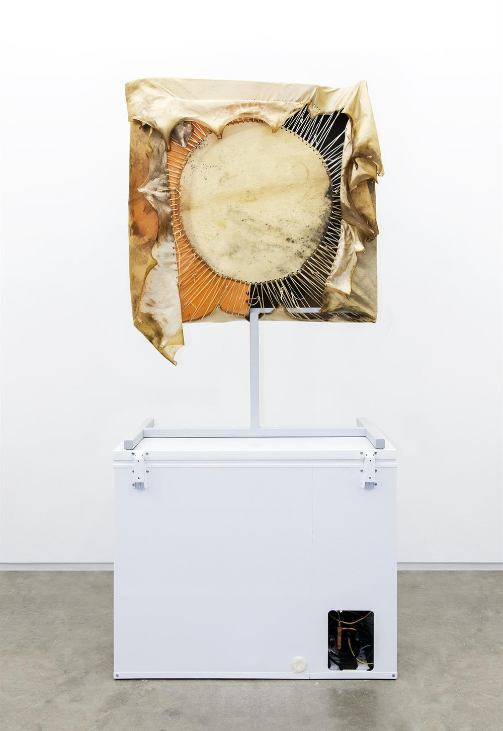 Brian Jungen,  Moon,  2013, Steel, deer hide, Trabant fenders, Freezer, 101 5/8 x 51 1/8 x 28 inches. Courtesy Catriona Jeffries.