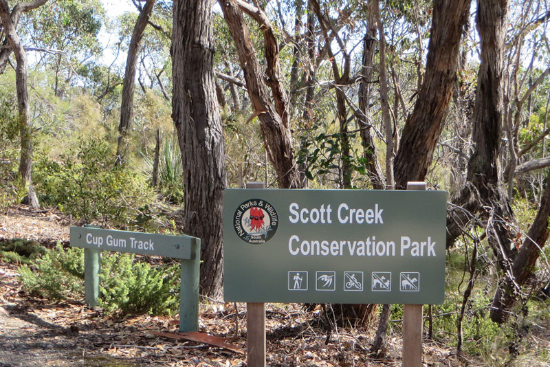 Scott Creek Conservation Park -
