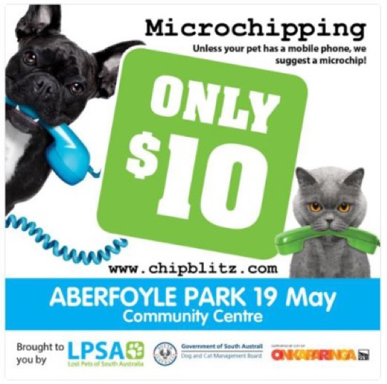 Microchipping.jpg