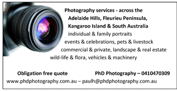 PhD-Photography-12x6.jpg