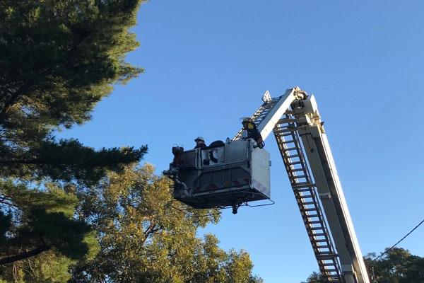 CC-Nov-2018-MFS-Koala-Truck-Rescue.jpg