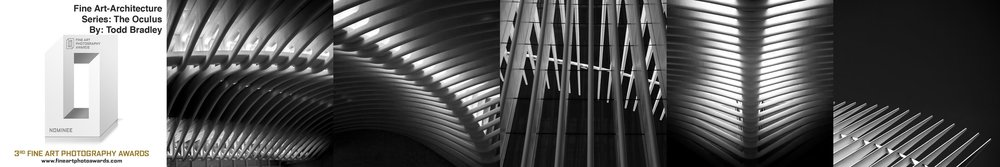 FAPA Awards  Honorable Mention:  Architecture   Series: The Oculus