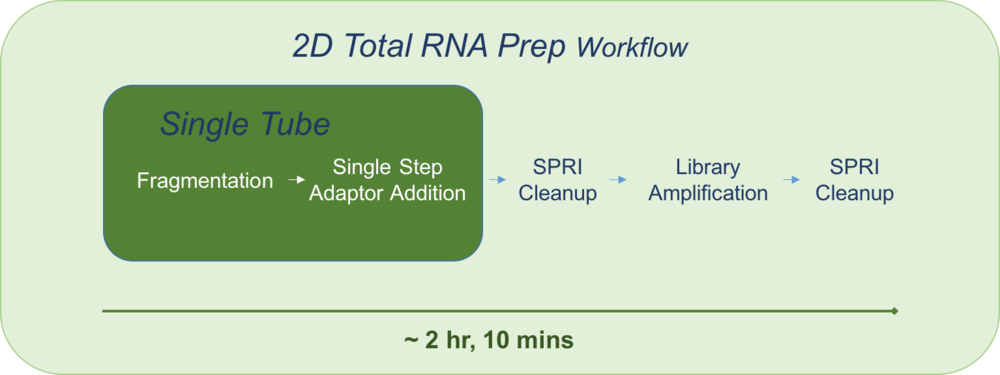 Total RNA workflow for product page.png