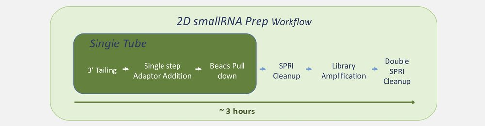 small RNA product page workflow.jpg