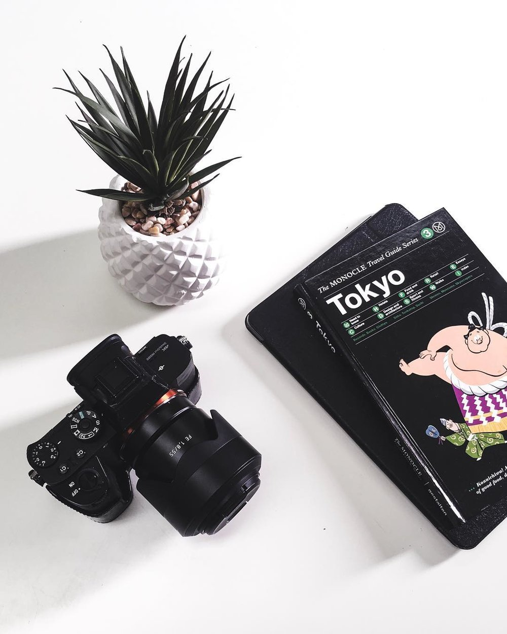 3. MONOCLE TRAVEL GUIDE SERIES: TOKYO - MONOCLE TRAVEL