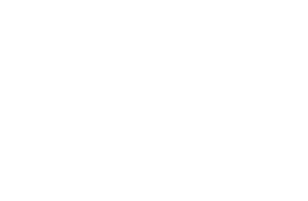 the game denmark