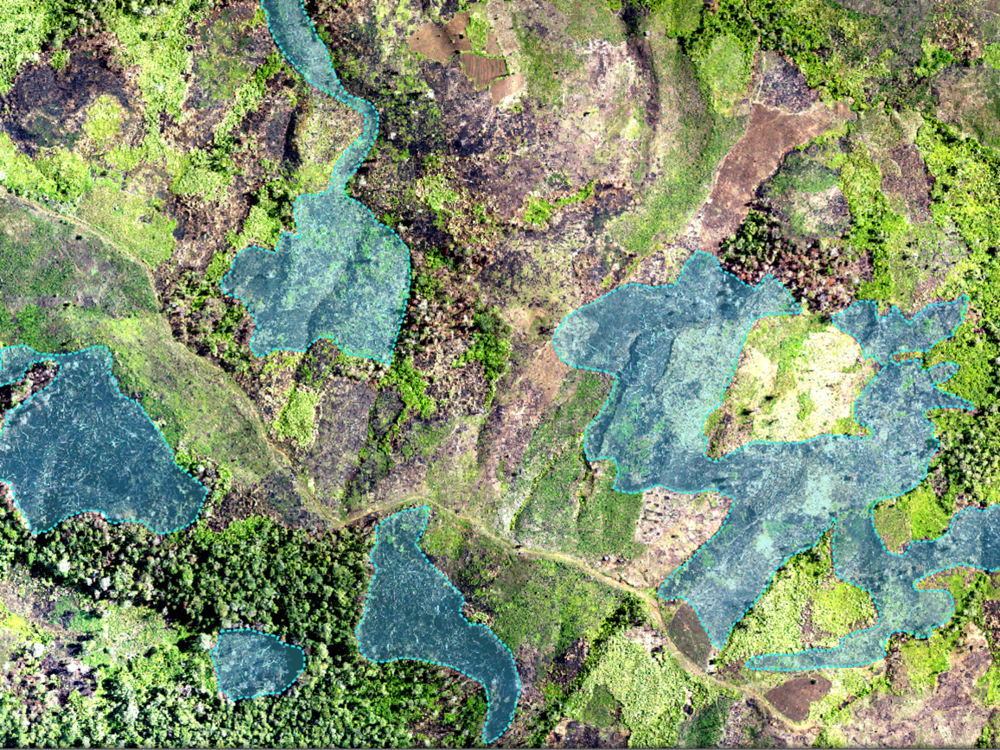 DEFORESTATION MAPPING