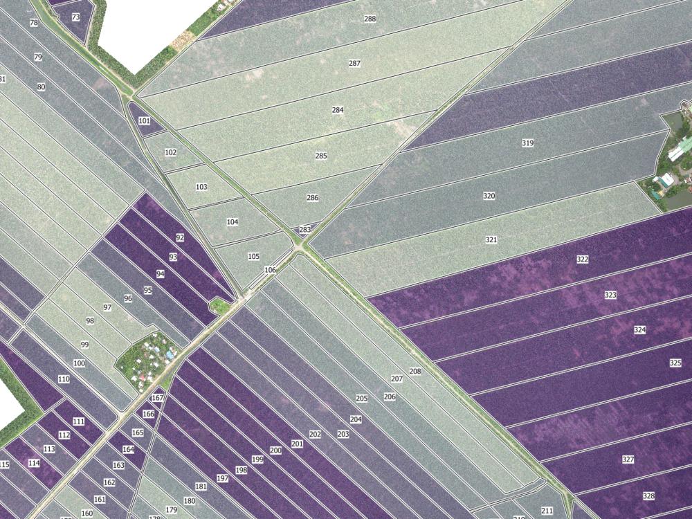 AVERAGE PLANT PROXIMITY PER FARM BLOCK