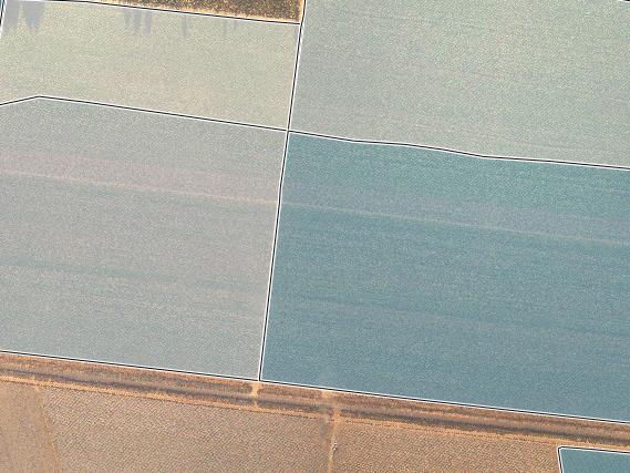 AVERAGE HECTARES PER FARM BLOCK