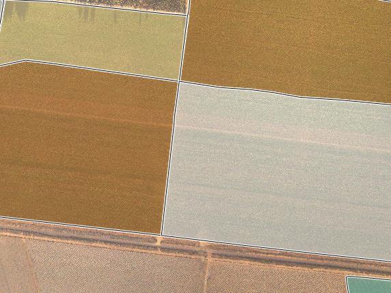 AVERAGE PLANT HEIGHT PER FARM BLOCK