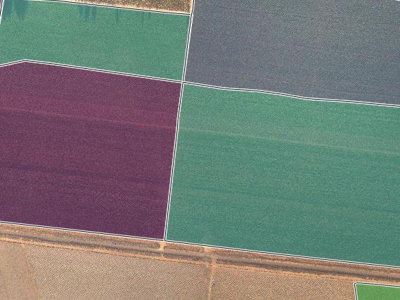 AVERAGE BIOMASS PER FARM BLOCK