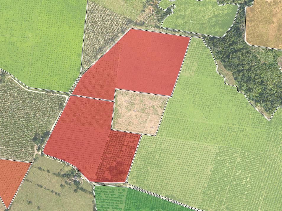 AVERAGE HEALTH PER FARM BLOCK