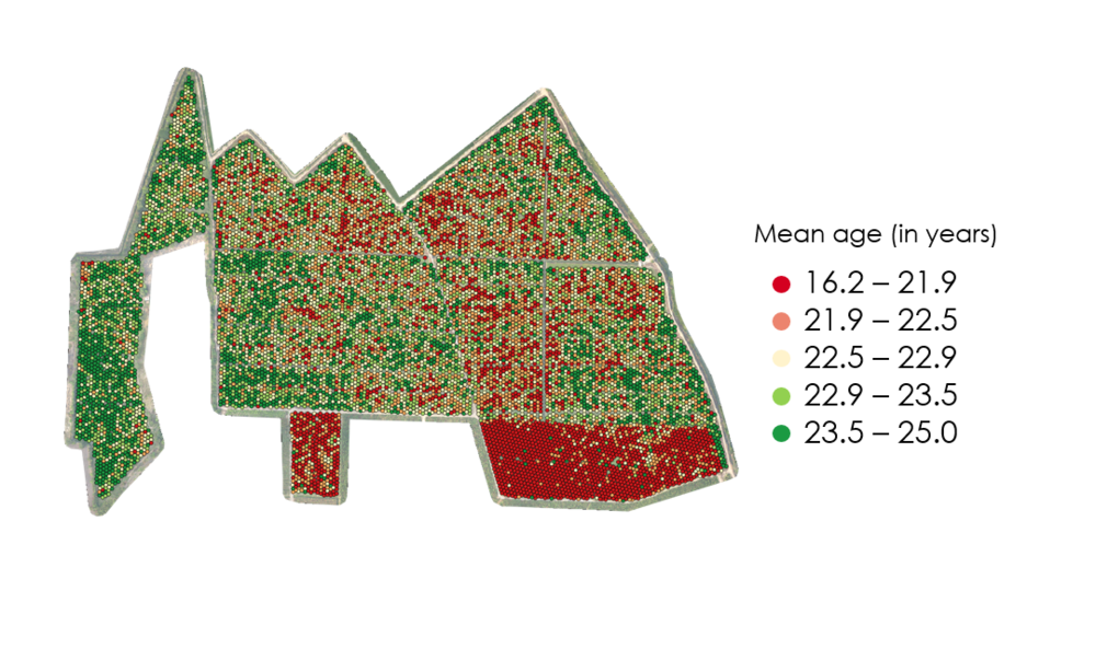 AVERAGE AGE OF INDIVIDUAL TREES