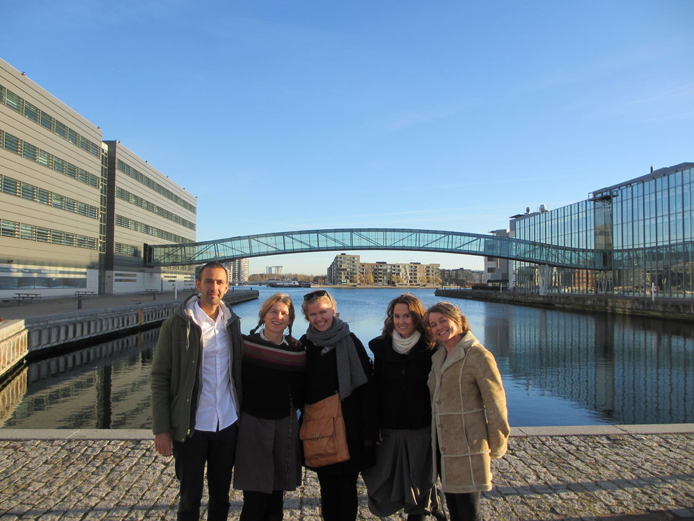 Meeting with the MICO music therapists in Copenhagen (October 2016)
