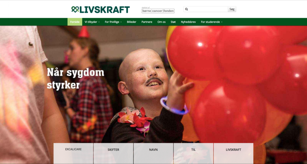 Livskraft  is at present the only Danish organisation that makes rehabilitation camps (Cool Camps) for children with various diseases, including children with cancer. The Cool Camps comprise a number of activities designed to support and challenge the children, including music therapy in which the music imagery narratives from the MICO project are used.