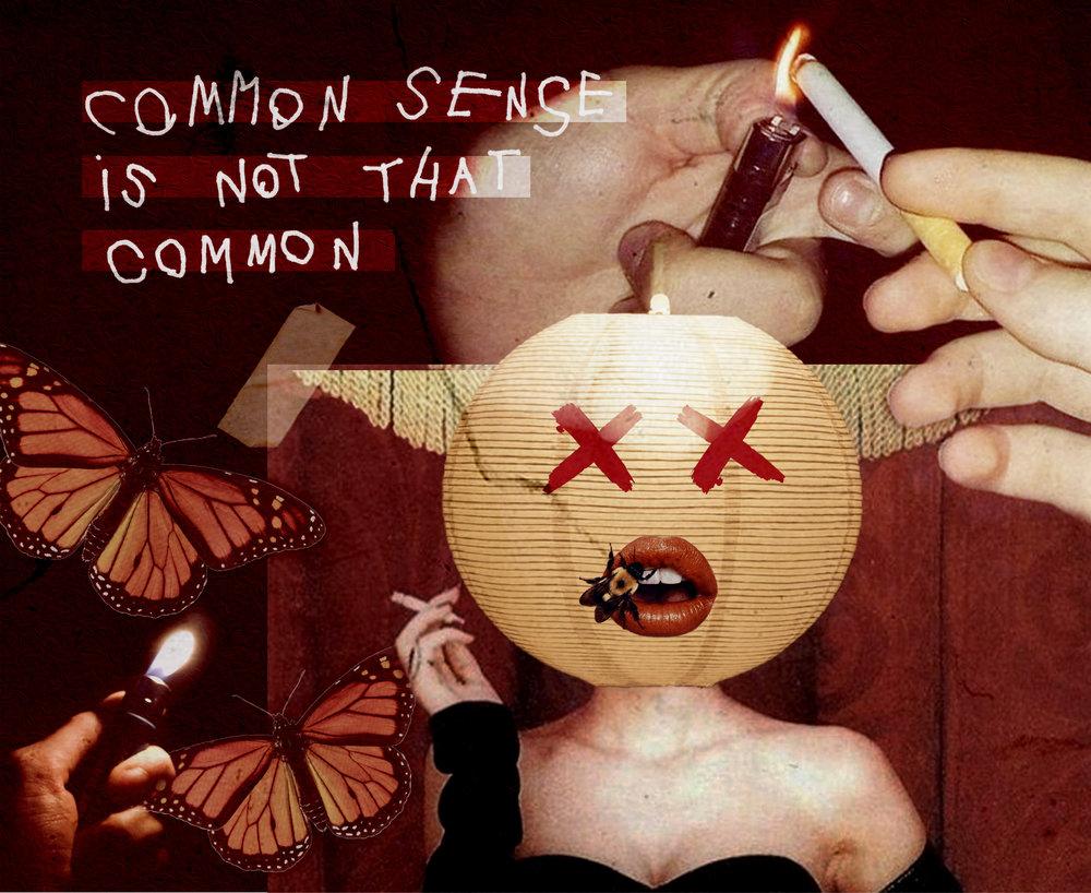 Common Sense (Adobe Photoshop 2019)