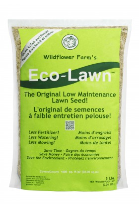 Eco Lawn Seeds