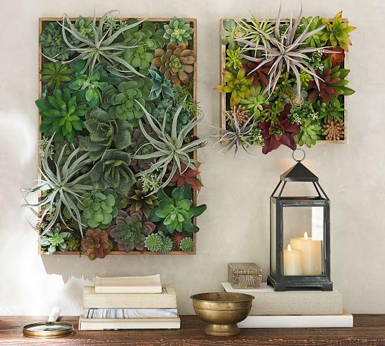 succulent-wall-potterybarn.jpg