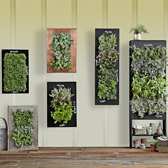 Free Standing Vertical Garden from Williams Sonoma