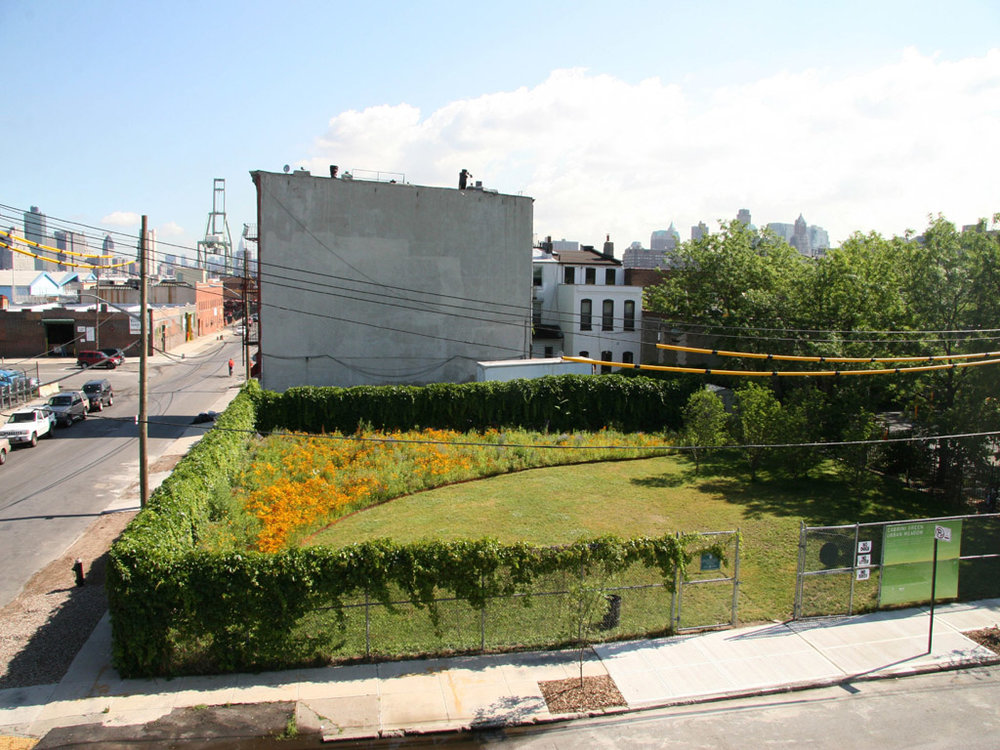 Urbanmeadow2.jpg