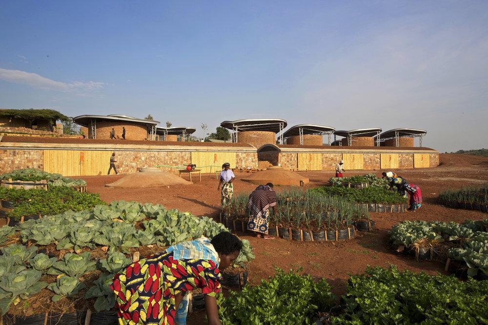 Rwanda1.jpg