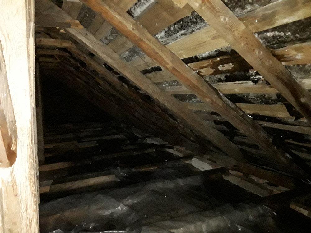 under roof2.jpg
