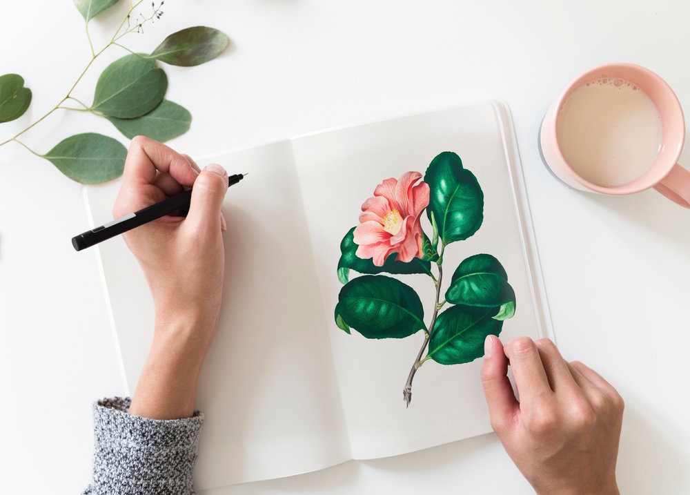 flatlay of flower drawing in notebook by woman.jpg