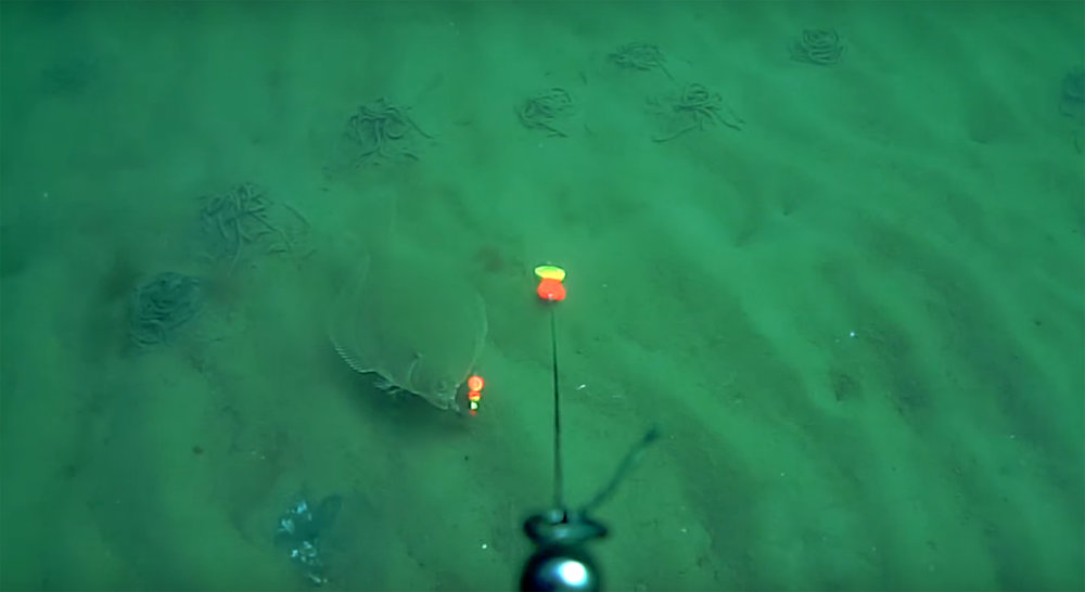 Unterwasser02.jpg