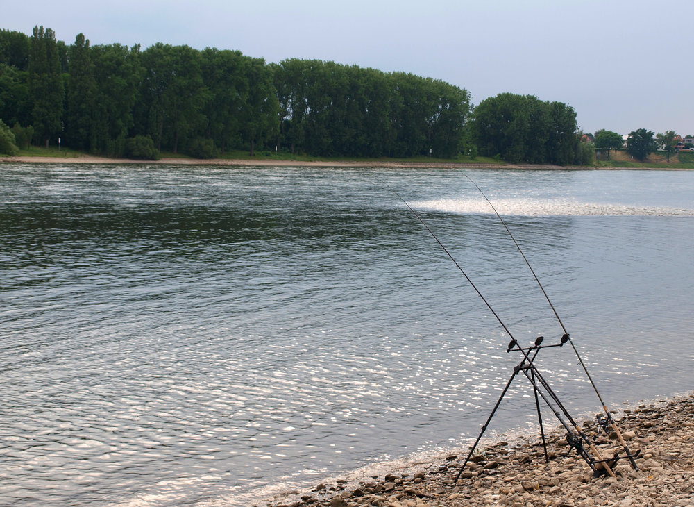 Rhein Flashback 2.jpg