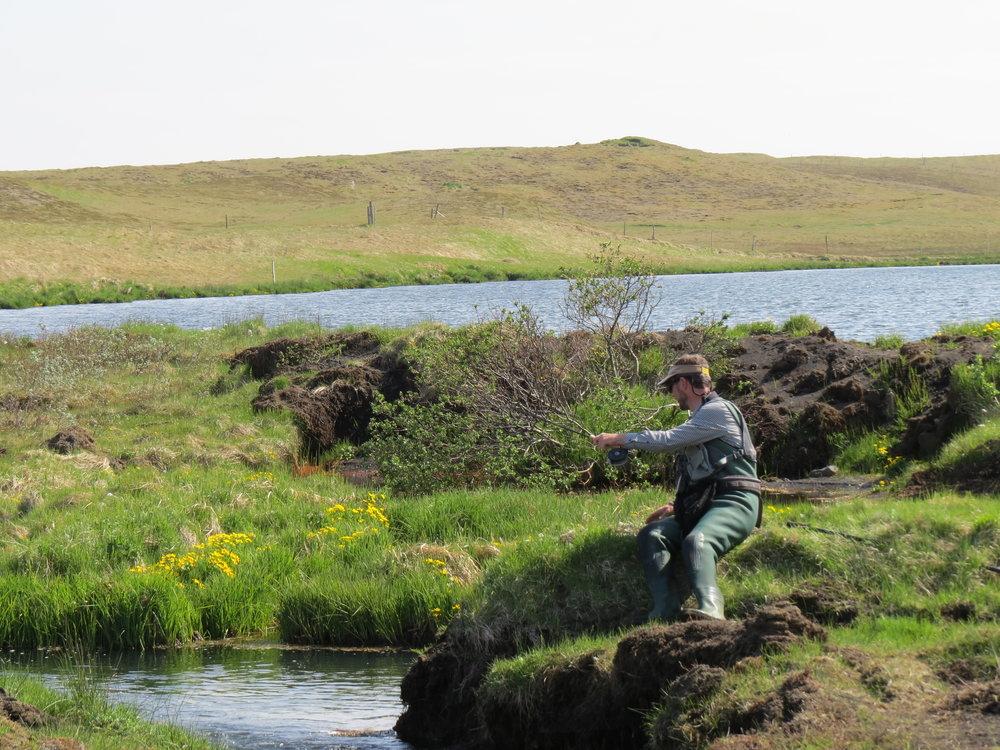 016_Forellenpirsch am Ablauf des Vikurflod in Kirkjubaerklaustur.JPG