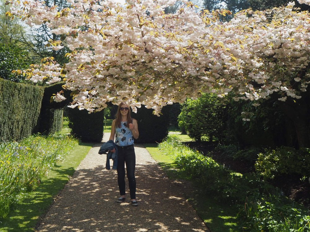 Girl under a blossom tree in Castle Ashby Gardens.jpg