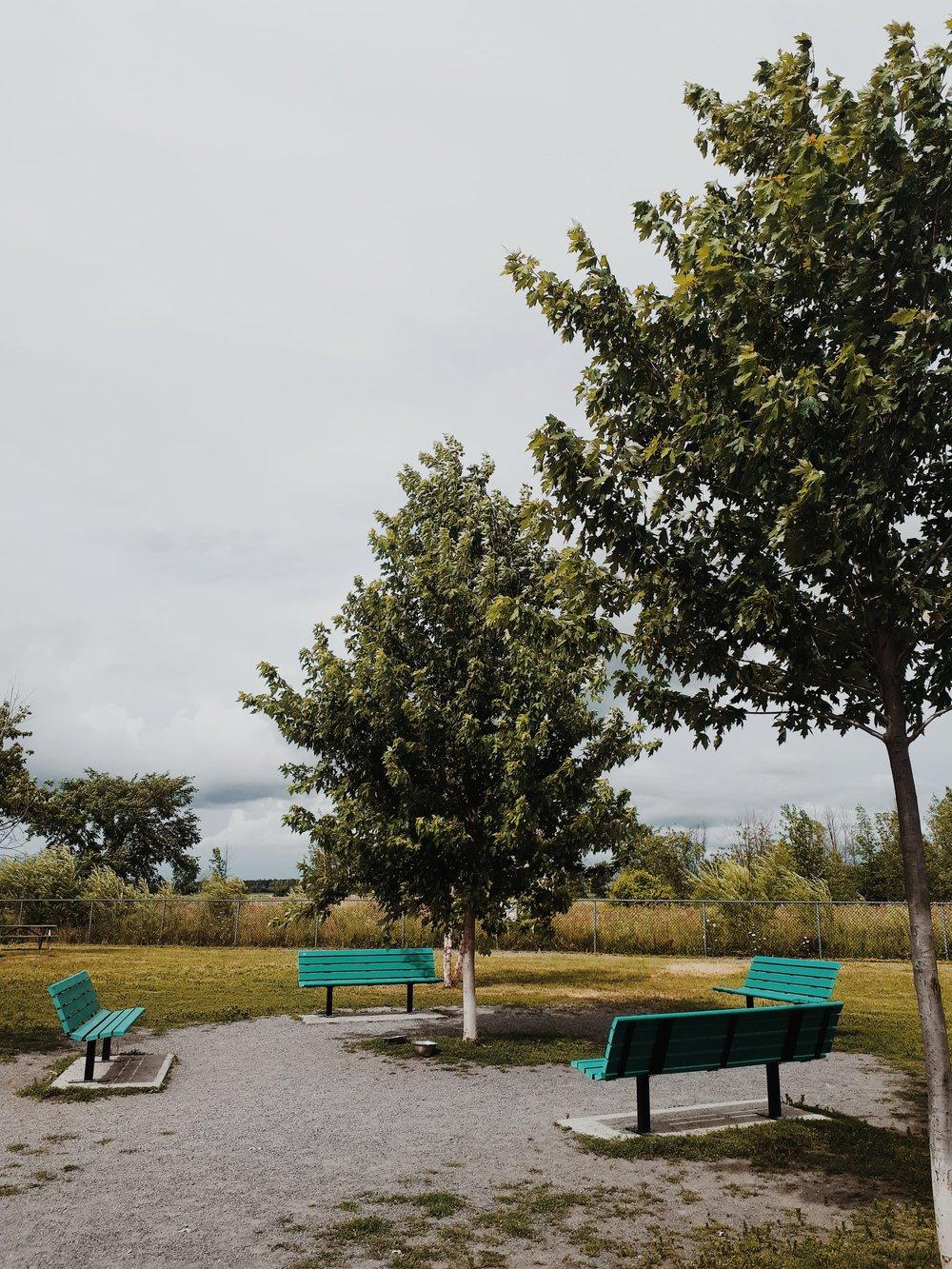 parc a chien sainte-julie.jpg