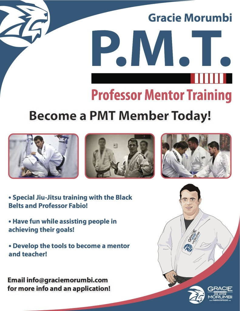 Professor Mentor Training